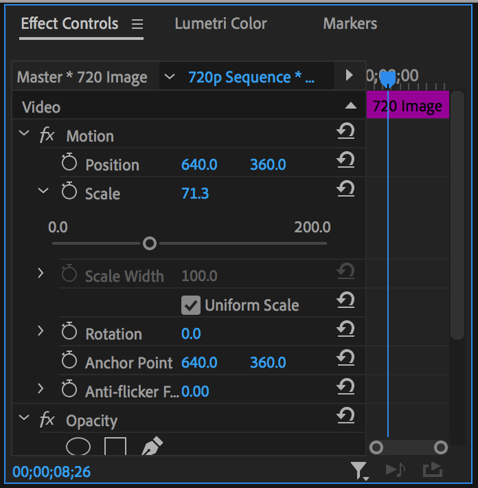 Scale property with slider open in Premiere Pro