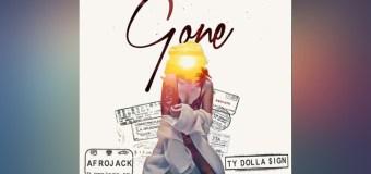 #Release | Afrojack – Gone