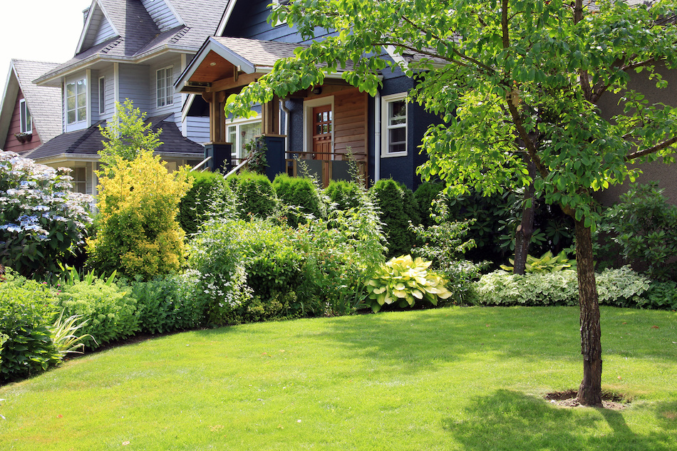 Basic Landscaping Maintenance for Beautiful Lawns on Basic Landscaping  id=73488