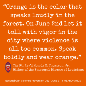 "Bishop Thompson's Statement on National Gun Violence Prevention Day: ""Be Loud and Wear Orange"""