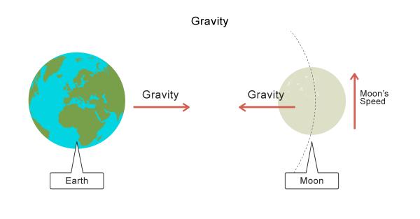 Gravity Worksheet - EdPlace
