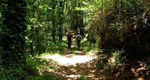 Ruta de los Tres Templos, País Vasco
