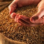 Goa Government launches National Food Security Act, 2013