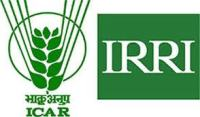 Cabinet nod for IRRI and ISARC at Varanasi