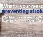 world stroke day 2017