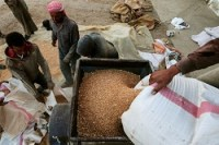 India becomes biggest consumer of Ukraine agriculture exports