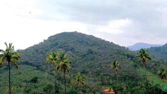 Karnataka to oppose Centre's notification declaring Western Ghats as eco-sensitive