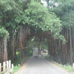 Kulgod got title of the most developed village