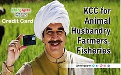 Govt extends Kisan Credit Card facility to fisheries, animal husbandry sector