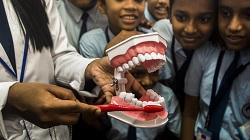 India Oral Health Survey 2019