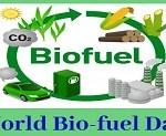 world biofuel day 2019