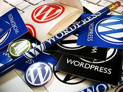 Wordpress Schawg by Peregrino Will Reign