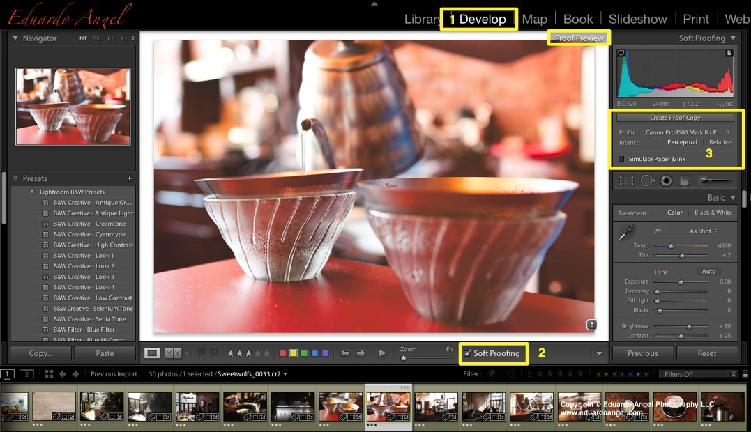 Adobe Lightroom 4 Soft Proofing - Eduardo Angel VisualsEduardo Angel