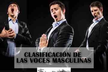 clasificación voces masculinas