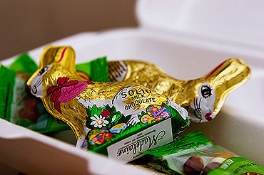 educadiver-easter-rabbits-conejos-pascua