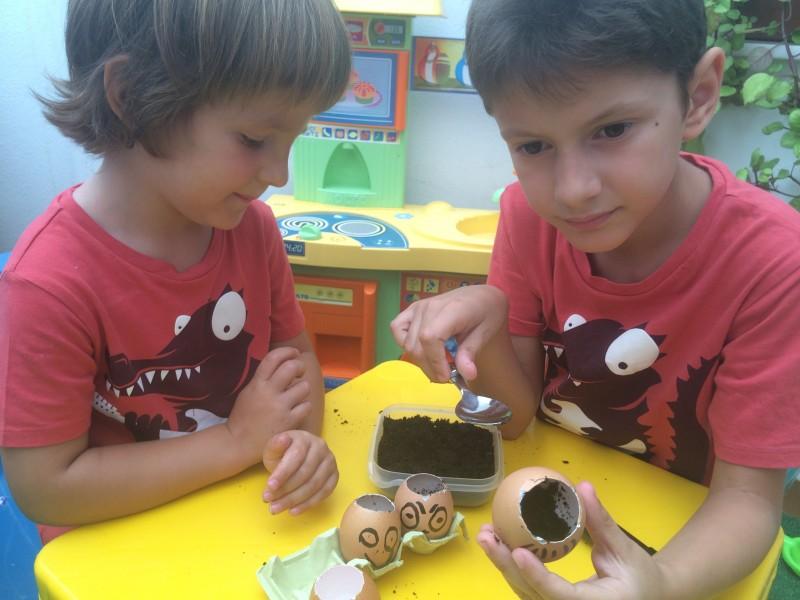 huevos-con-semillas-poner-sustrato-niños-muestra