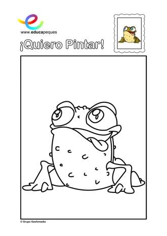 colorear_sapo