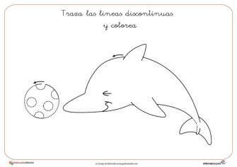 delfin-01