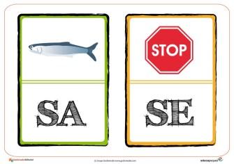 sA-sE-01