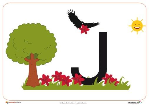 J primavera