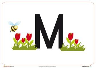 M primavera