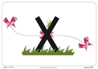 X primavera