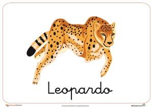 Fichas de Animales Salvajes: Leopardo