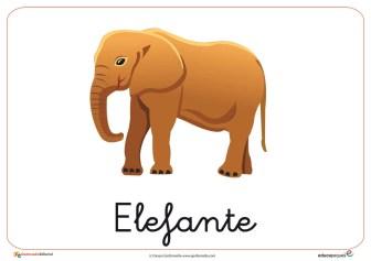 Fichas de Animales Salvajes:Elefante