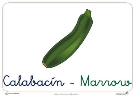 verduras y hortalizas 9