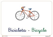 bicicleta ficha transporte