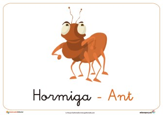 hormiga ficha insectos