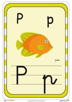 Copia de abecedario en color p