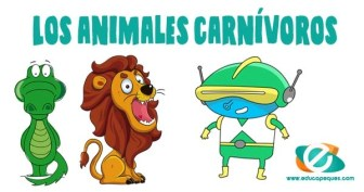 Animales carnívoros