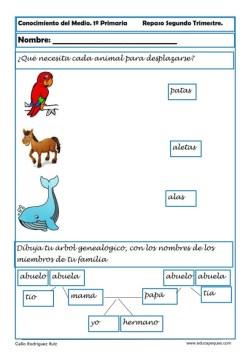 conocimiento del medio primaria 18