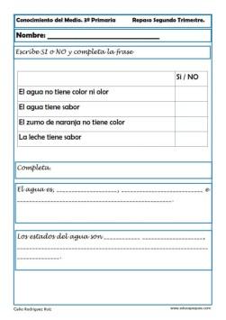 Fichas Conocimiento del medio sexto primaria 2 trimestre 02