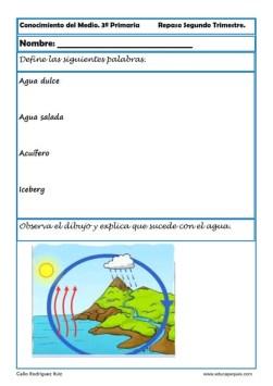 conocimiento del medio primaria 08