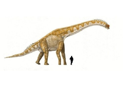 dinosaurios 25