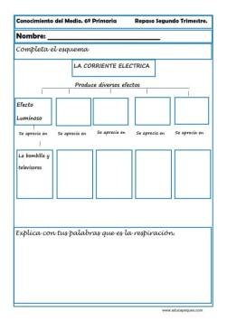 Fichas Conocimiento del medio sexto primaria 3 trimestre 03
