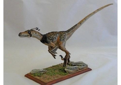 imagenes dinosaurios parte 2_016