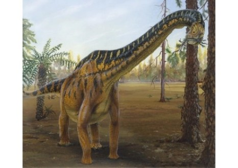 imagenes dinosaurios parte 2_032