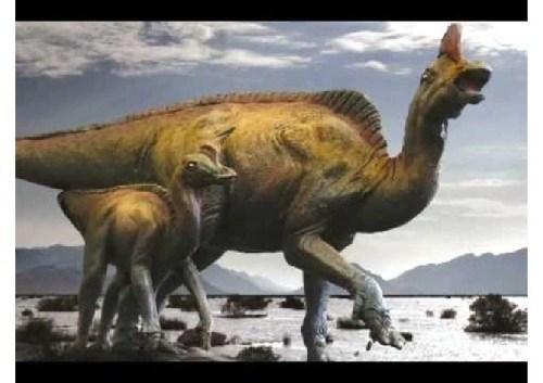 imagenes dinosaurios parte 2_045