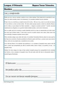 lengua primaria 13