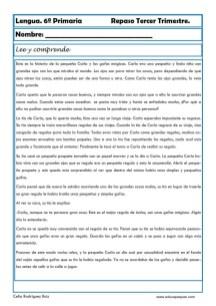 ejercicios lengua sexto primaria 07