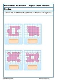 fichas matemáticas sexto primaria 14