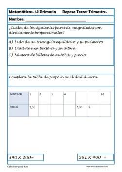 fichas matemáticas sexto primaria 26