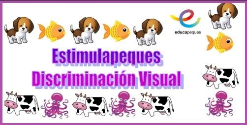 percepción visual, discriminación visual