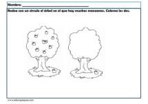 infantil conceptos básicos_013