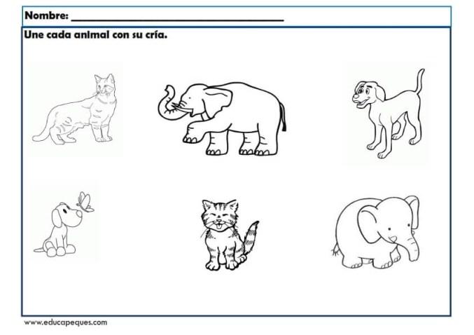 infantil animales_001