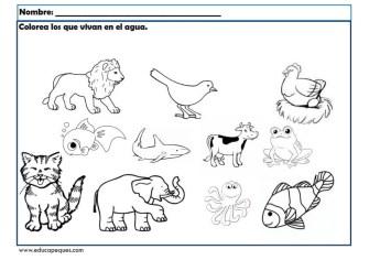 infantil animales_002