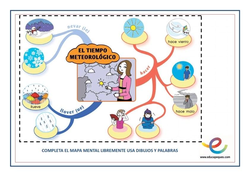 fichas metacognición 4